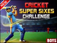 Cricket Super Sixes Challenge Game - Cricket Games