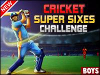 Cricket Super Sixes Challenge Game - Cricket Games